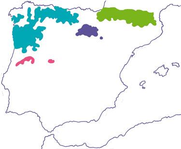 Carte de répartition mondiale du Desman des Pyrénées (Source: d'après Gisbert & García-Perea modifiée avec les données d'A. Bertrand, 2008)
